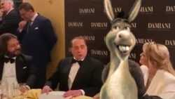 Berlusconi asino barzelletta